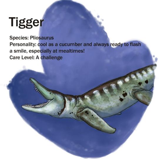 Tigger plio