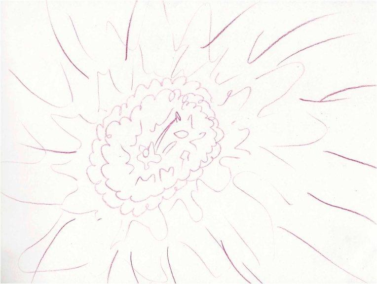 flower scribble.jpg