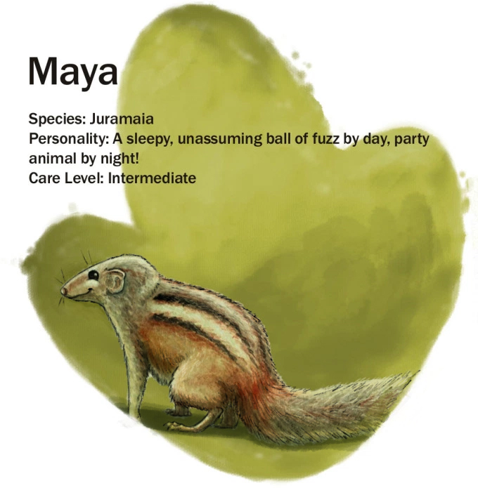 Maya update