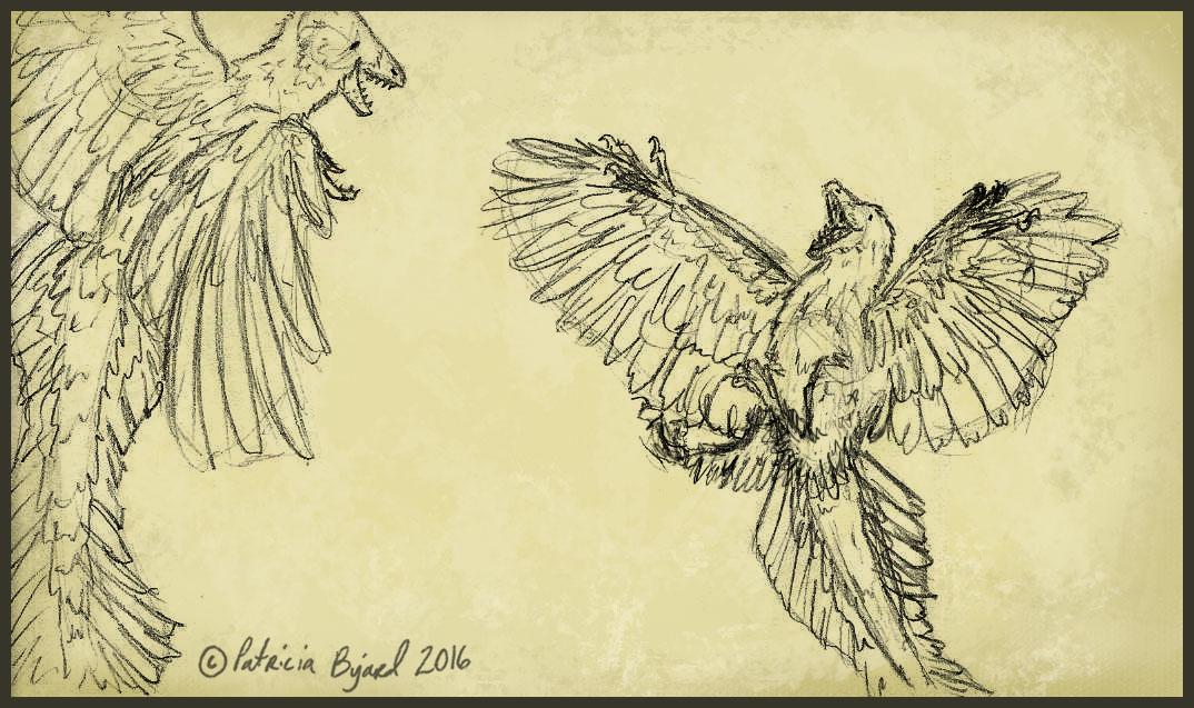 flying-tango-copy