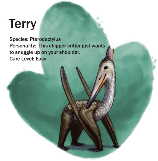 terry-update