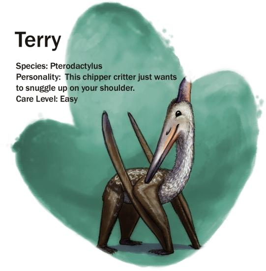 terry-update