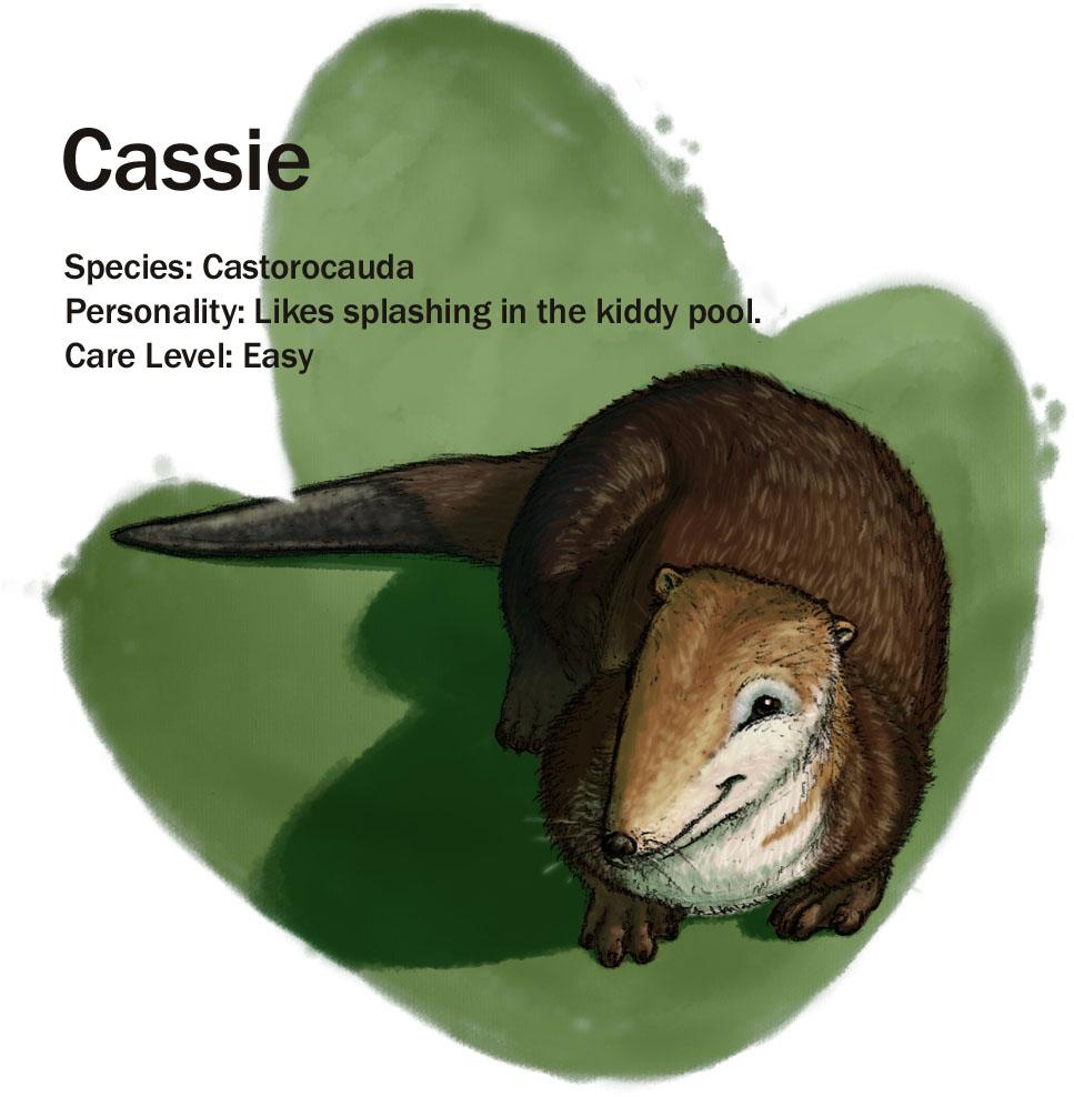 Cassie_update