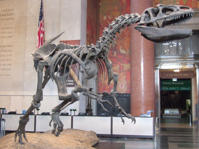 amnh-allosaurus-entrance-hall.jpg