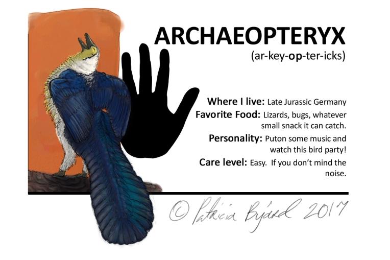 Archaeopteryx box