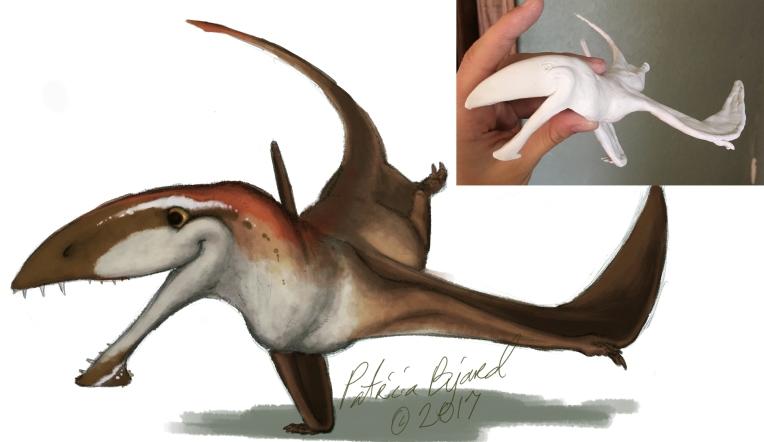 Dimorphodon_lightcolor