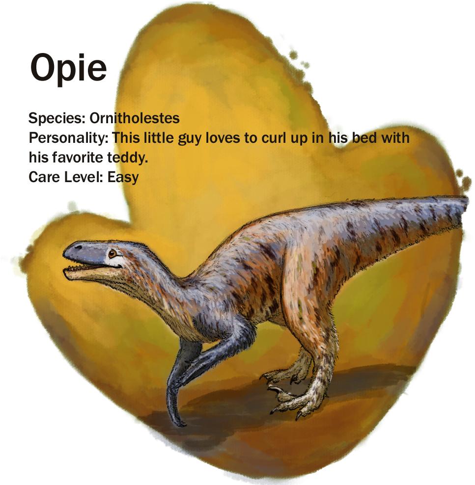 Opie_update.jpg