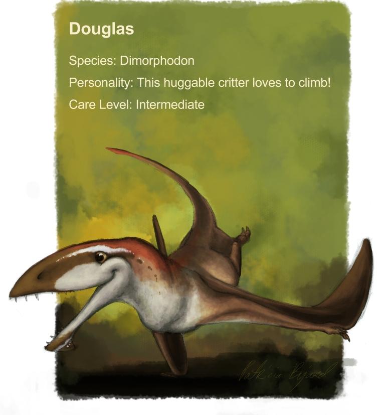 Douglas profile update_website