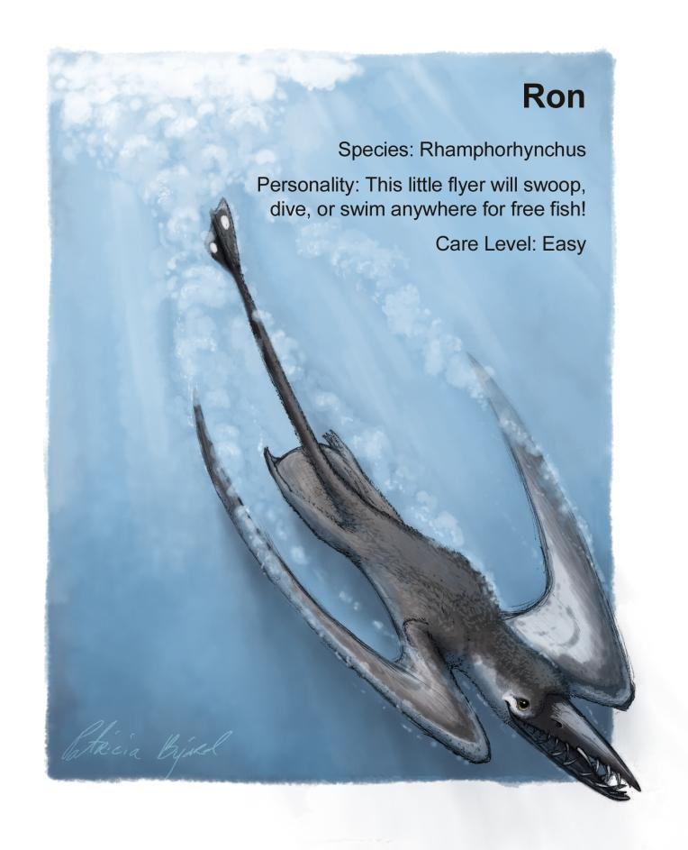 Ron profile_updateflat
