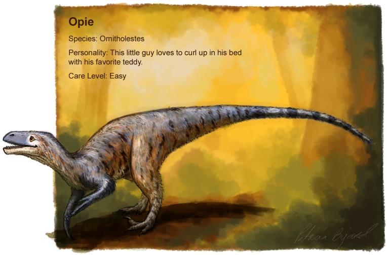 Opieprofile_flat