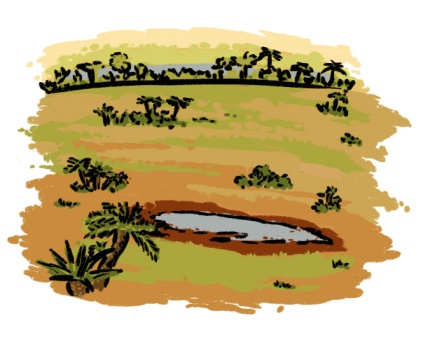 dry floodplains_flat