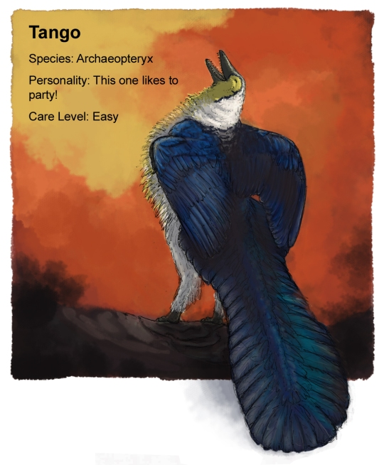archaeopteryx_square update_flat