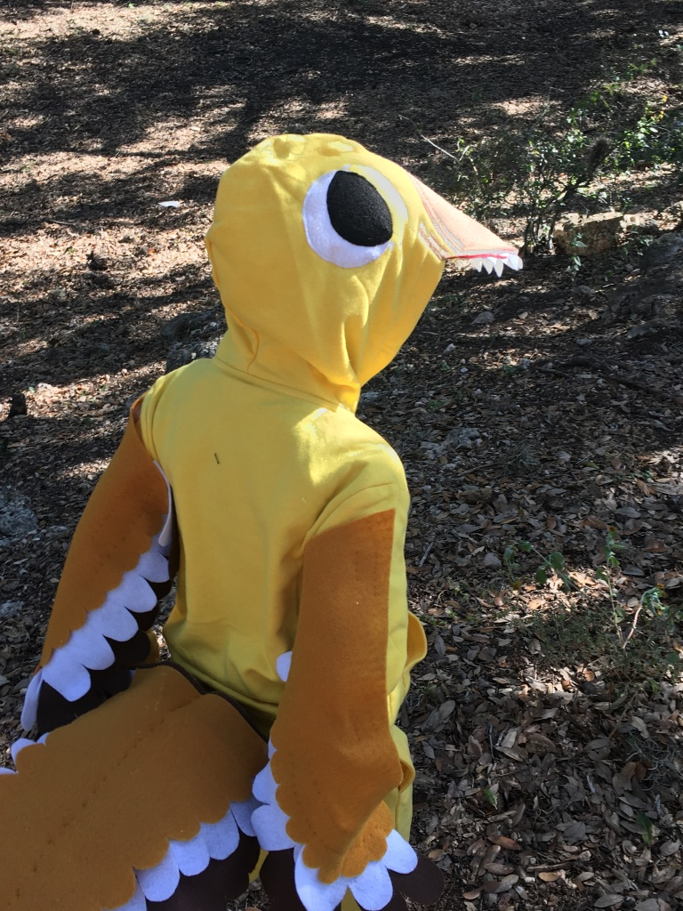 A cute Utahraptor! My boy loves his costume. :)
