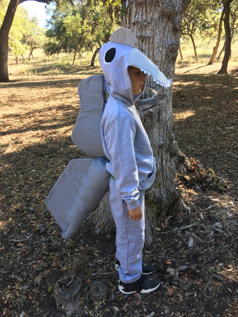My eldest son dressed as Spinosaurus.