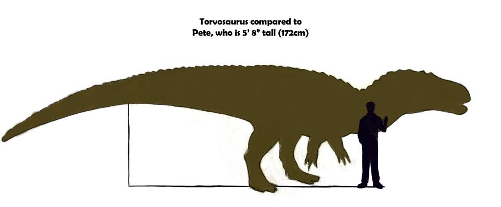 Torvosaurus was about 30 feet long.