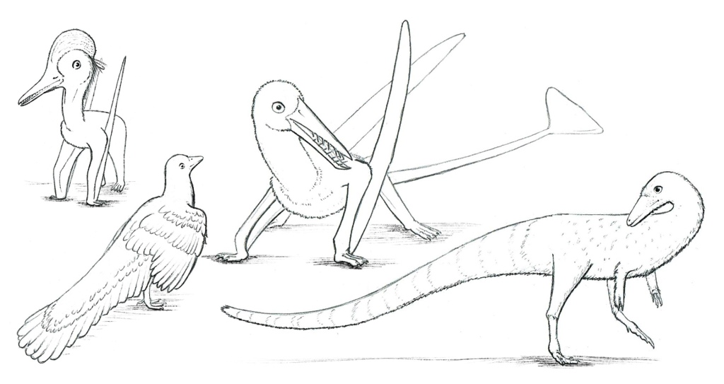 Solnhofen neighbors from left to right...Pterodactylus, Archeopteryx, Rhamphorynchus, and Compsognathus.